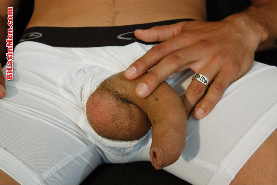 sex Gay porn bi