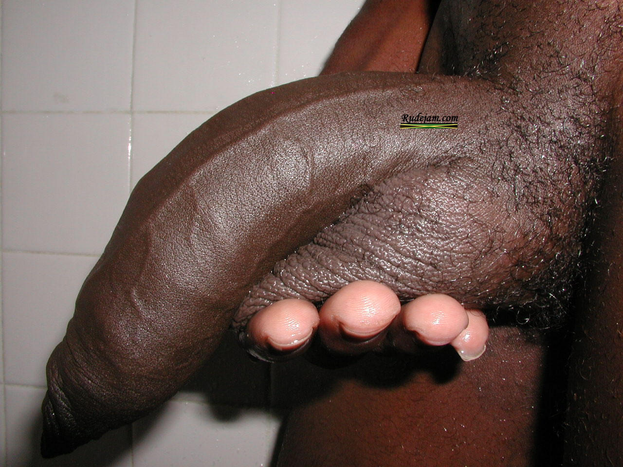 Big Black Dick For Free 89