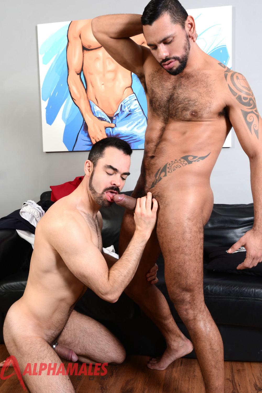 Gay uncut latino cock fucking