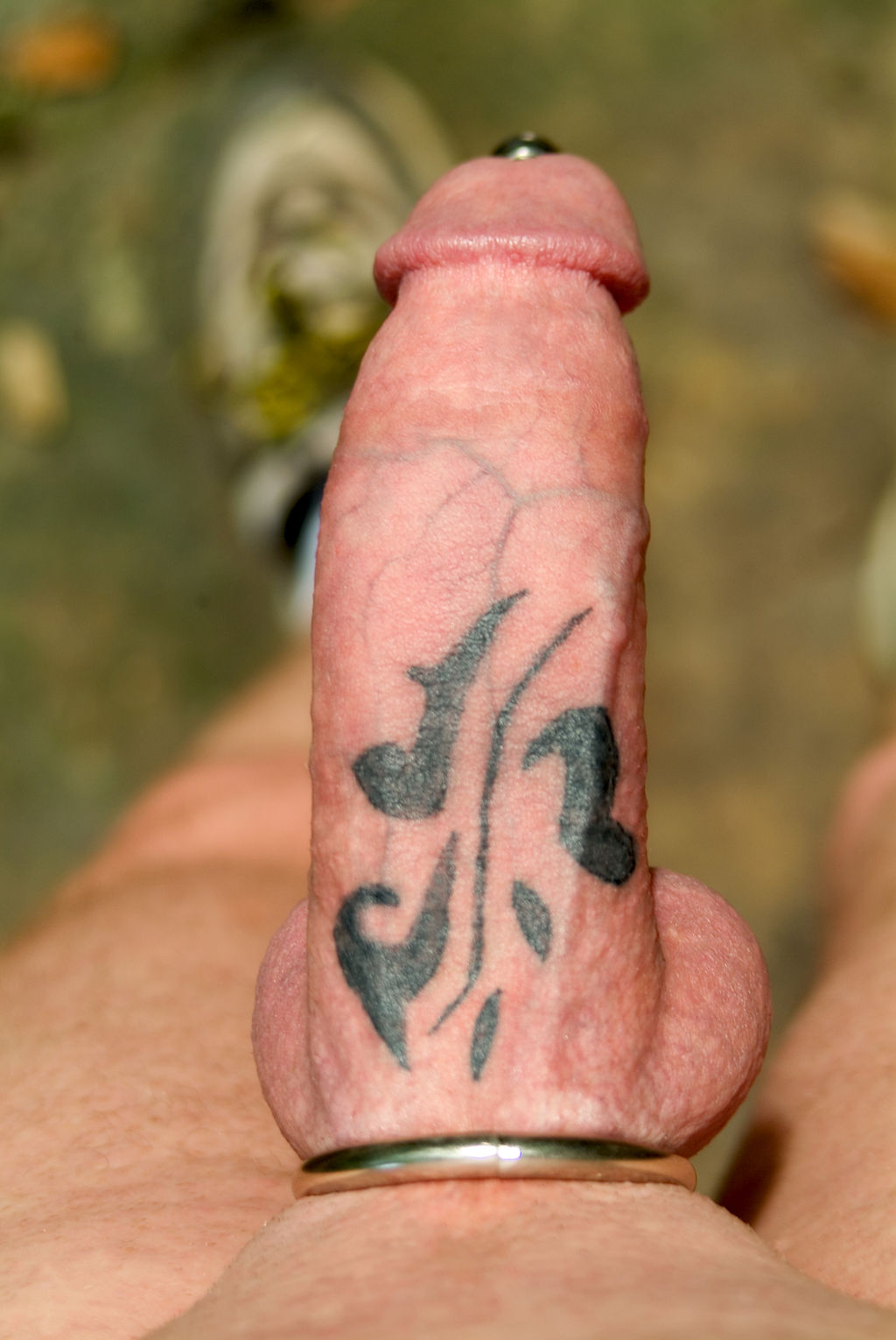 Dick ring tattoos and dick mods net  softcore movie