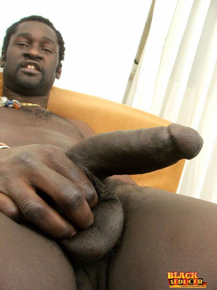 Gay Fetish XXX   Black Male Gay Monster Cocks Gay Fetish XXX