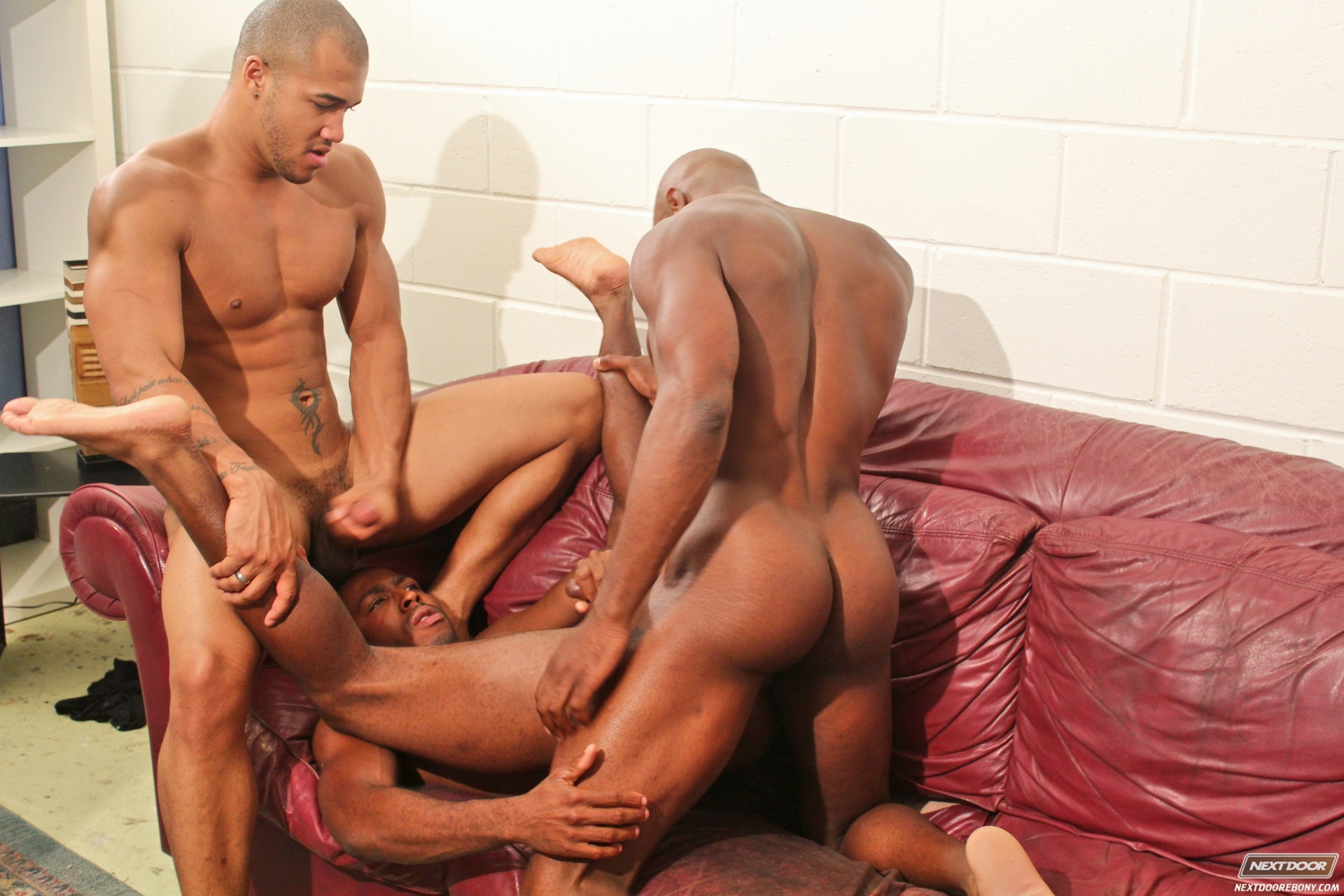 Gay - 15298 videos - Tasty Blacks Free Ebony Black Sex