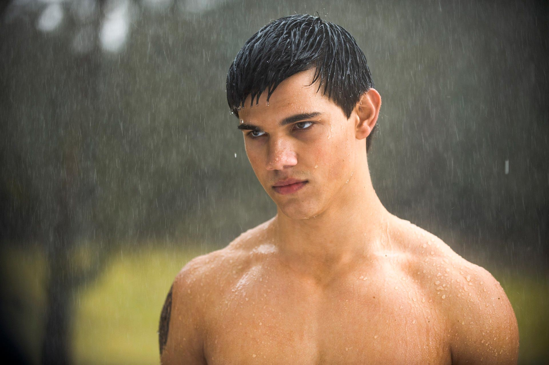Taylor Lautner Gay Nude Image 3687