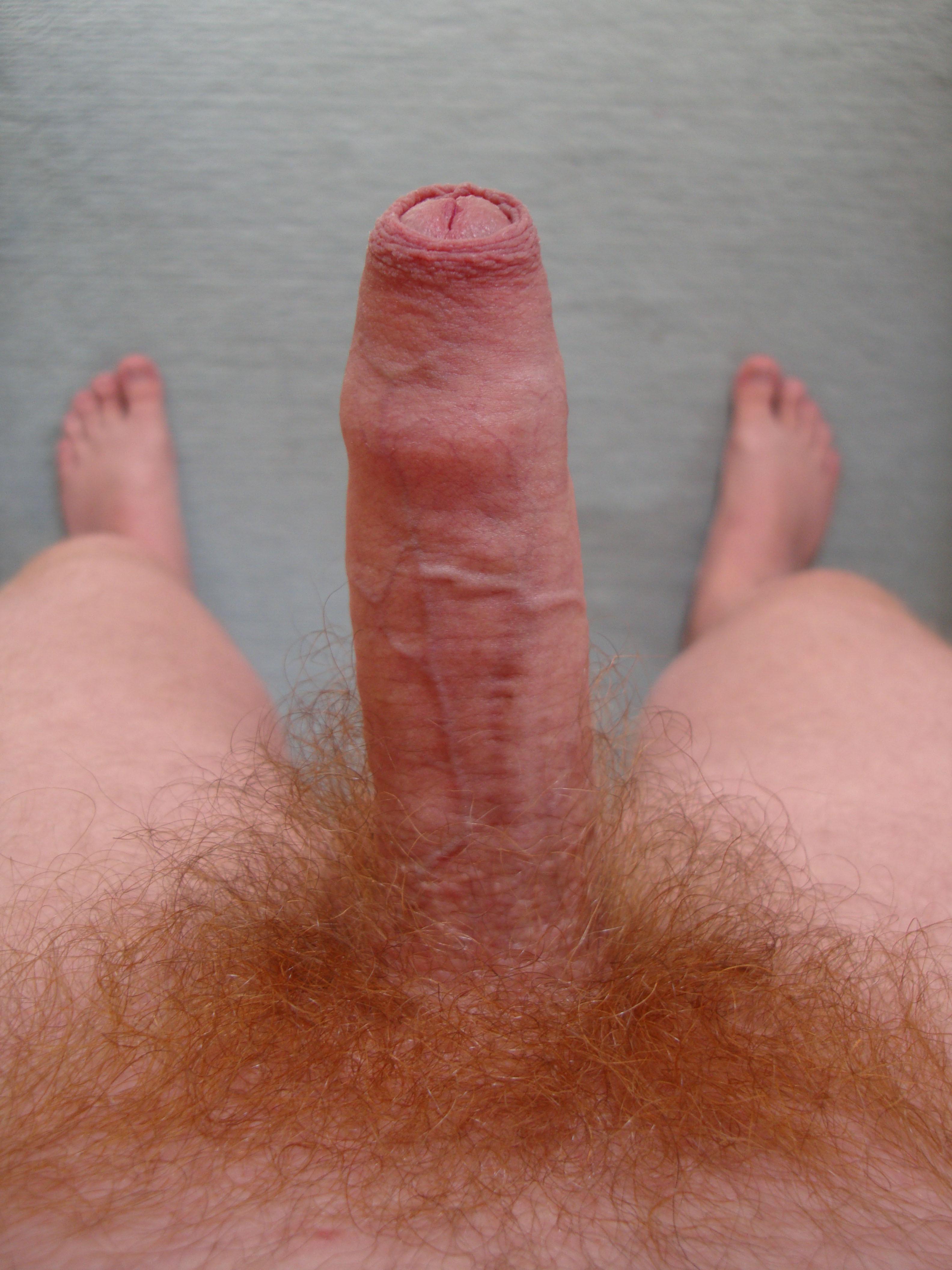Uncut Ginger Cock