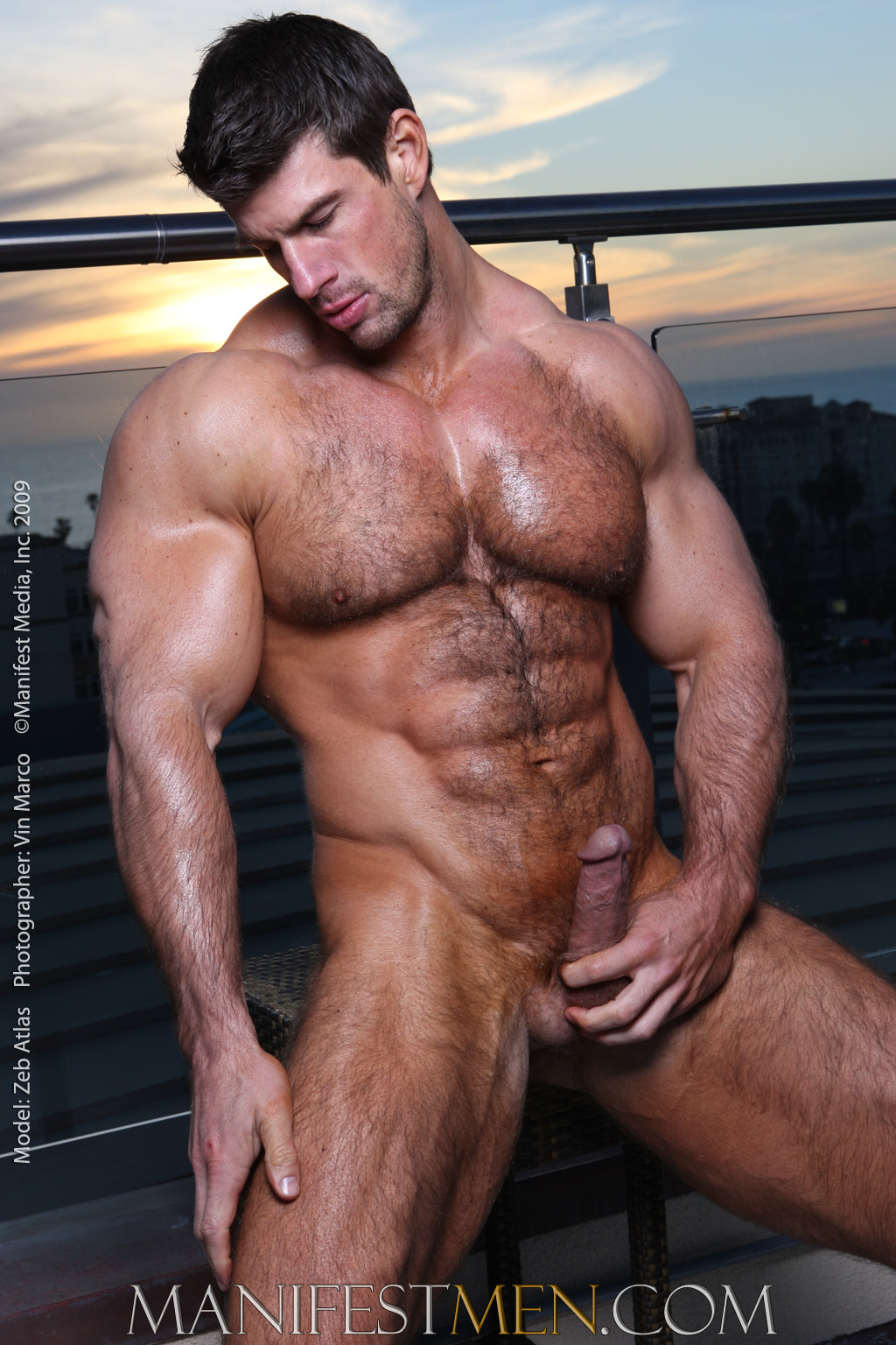 bodybuilder gallery Hairy