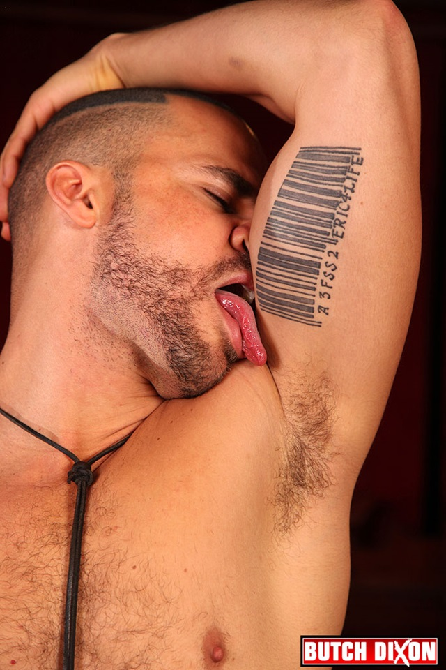 gay bear cub porn hairy muscle gallery porn men video gay photo male guys daddy bears delta mature butch dixon older cubs subs kobra
