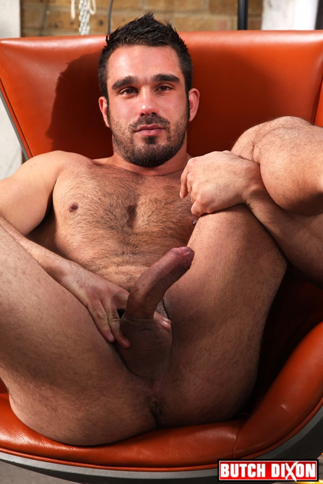 apelo musclebear porno gay