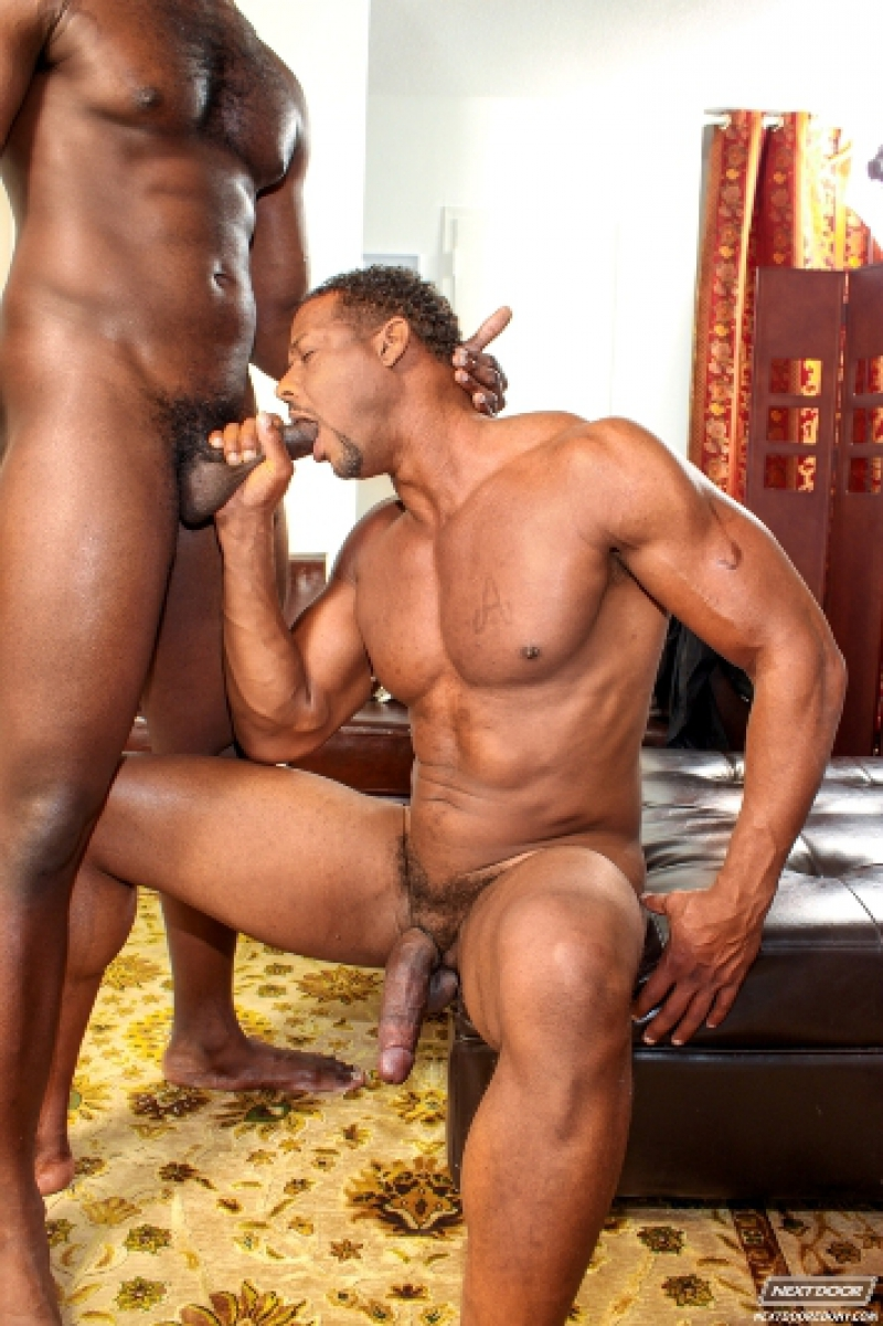 Nude gay black guys