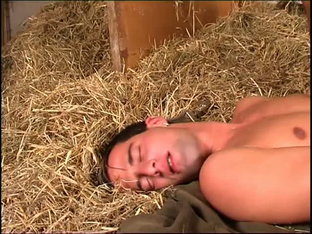 gay pics cocks media videos free tmb