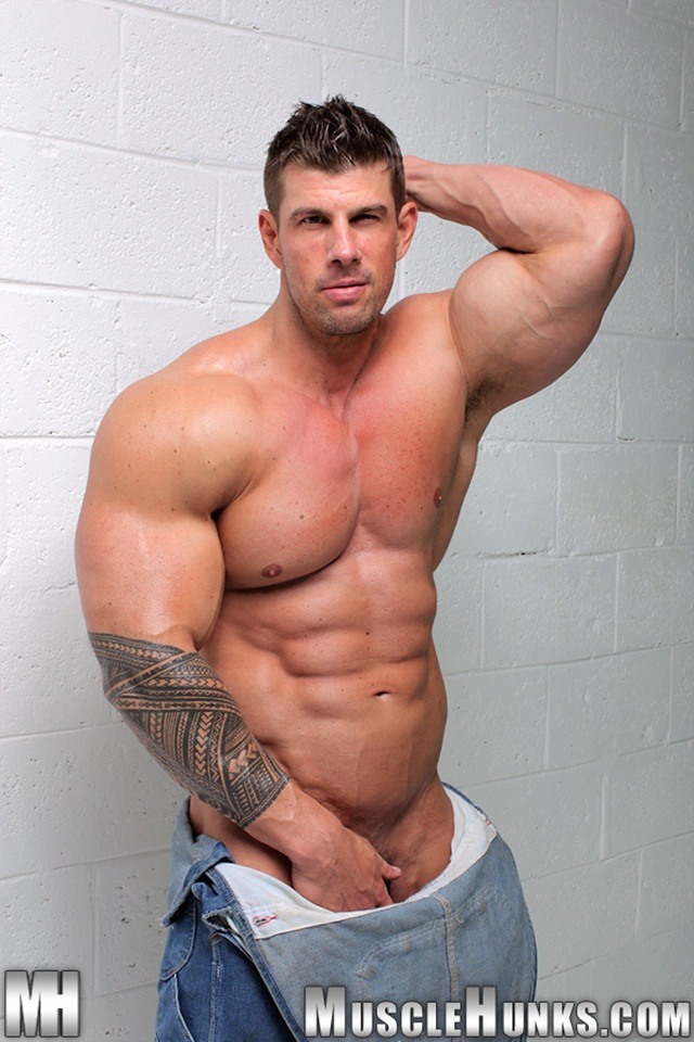 gay porn muscle men