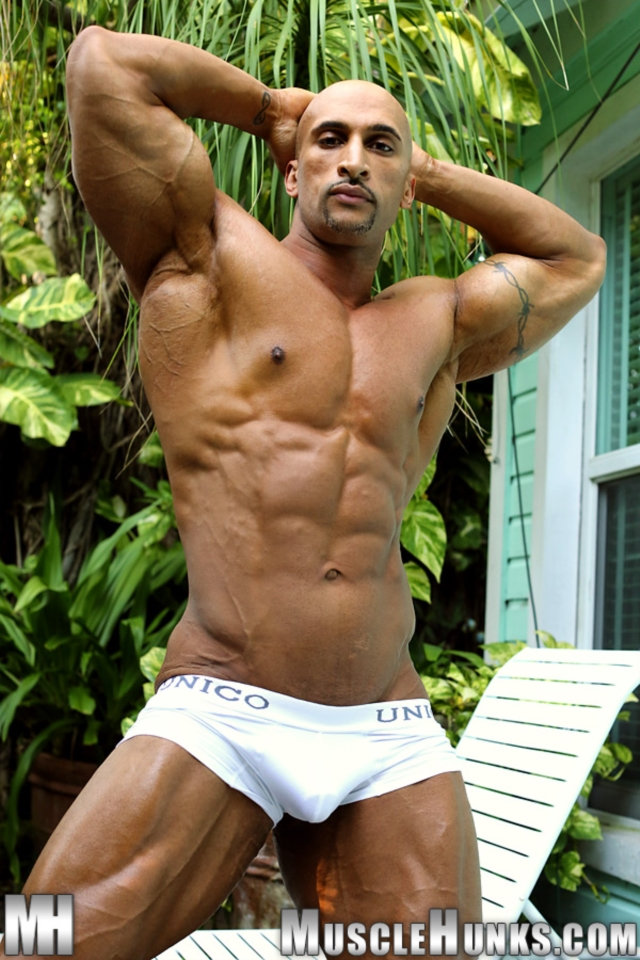 gay porn muscle muscle ripped gallery porn men video gay photo bear pics nude uncut cocks hunks tube muscled tattooed bodybuilders rico cane