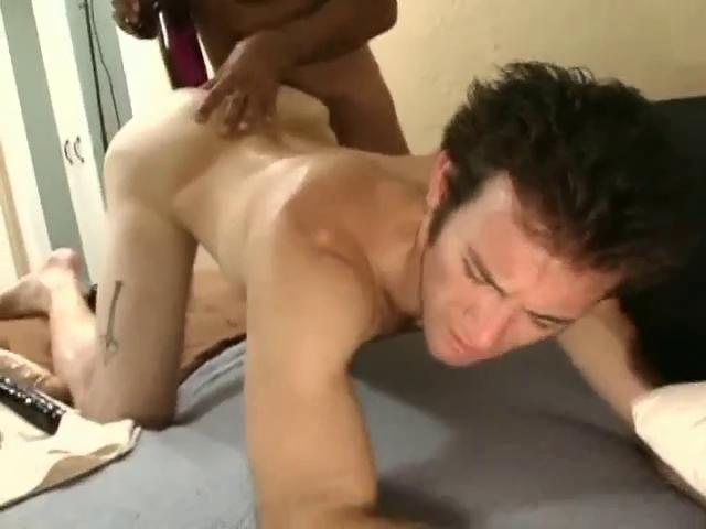 hairy gay porn free hairy