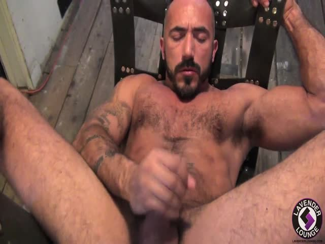 muscle bear gay porn muscle videos bear reflections