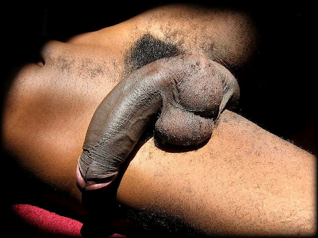 sexy black men nude pictures black men sexy