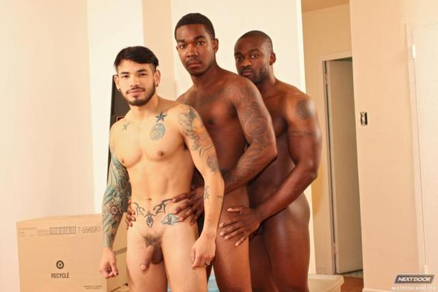 Ace Rockwood Gay Naked gallery galleries next door fuck ebony ace rockwood reynolds draven torres deryk