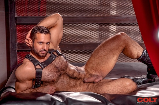 Adam Champ Porn adam champ hairy muscle hunk armour from colt studio group pic stars more gruff stuff waterbucks