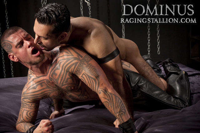 Adam Champ Porn aclm dominus raging stallion