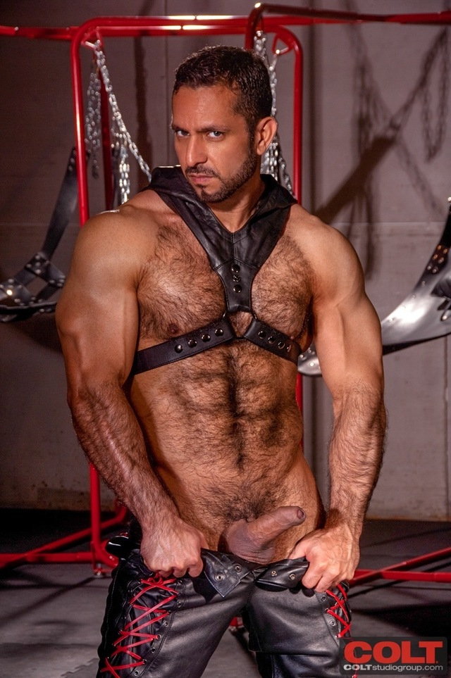 Adam Champ Porn adam champ muscle hunk stud jake genesis armour from colt studio group takes leather