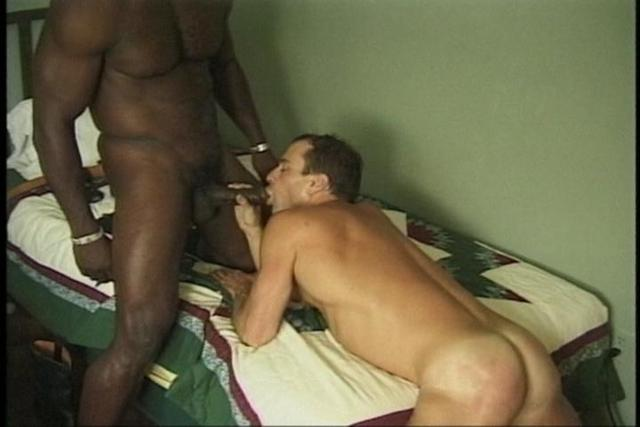 African gay sex black white gay
