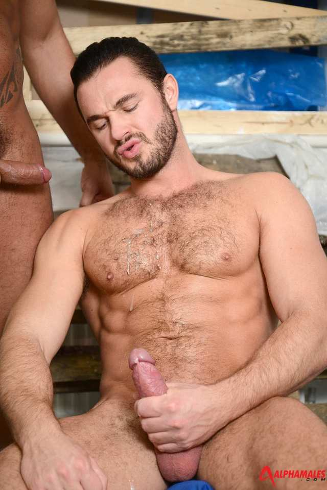 alpha male gay porn porn men category gay fucking amateur alphamales tiko cum masculine jessy ares blast