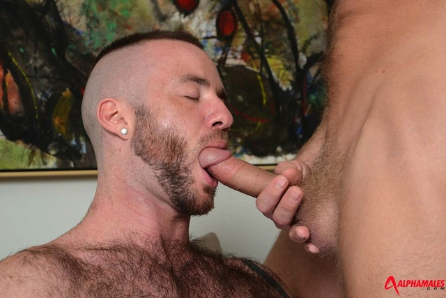 alpha male gay sex porn justin gay man males their have scene manly christopher daniels parts alpha king bottoms