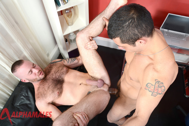 alpha male gay sex porn search justin gay boy males cruz alpha king gio