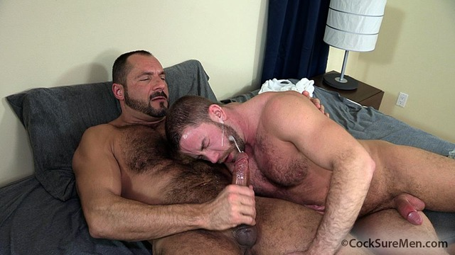 Arpad Miklos Porn hairy muscle pic fuck hunks arpad miklos trade blow jobs shay michaels cocksuremen