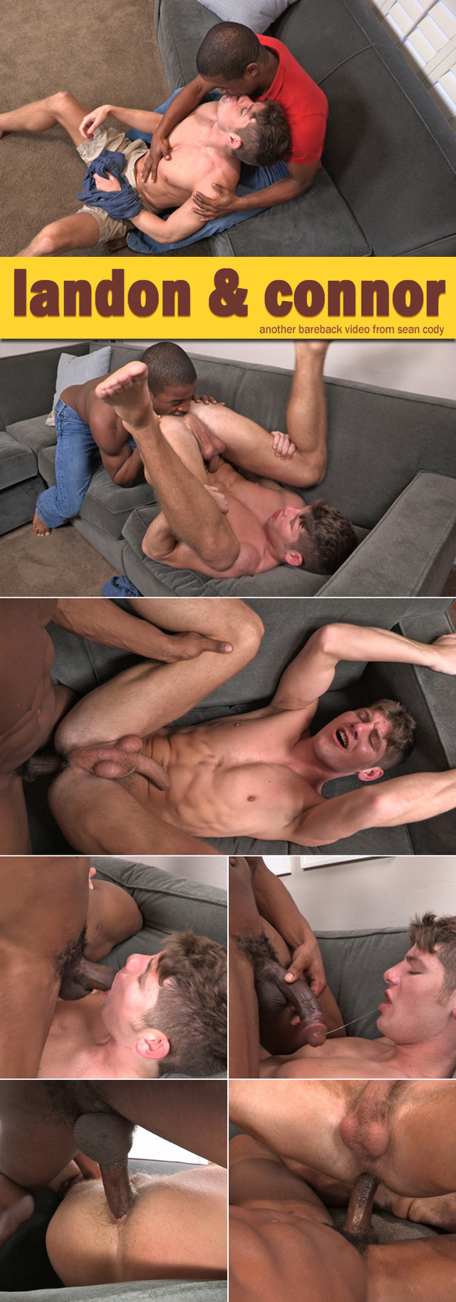bare back sex gay black white gay cody bareback sean landon collages seancody connor