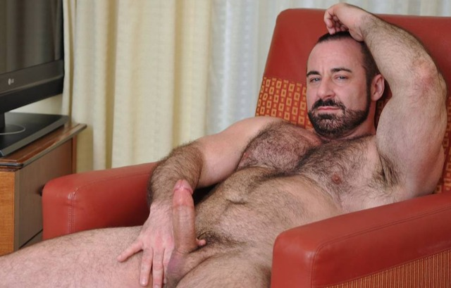 bear gay porn Pic hairy cock gay bear nude rocky labarre mature musclebear