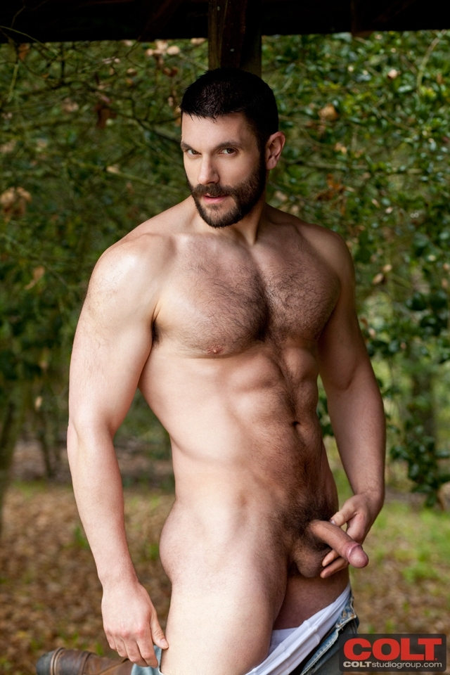 bear porn pics muscle pic bear nude teasers bob our favorite hager