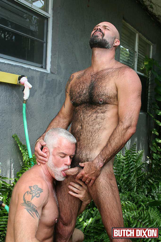 best gay daddy porn fucks jake porn his gay amateur cub daddy marco butch dixon rios marshall silver
