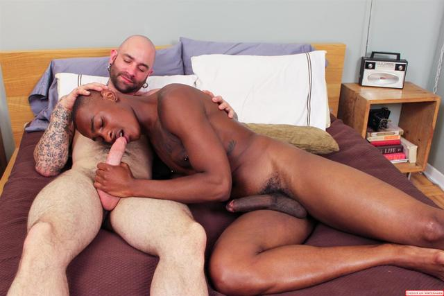 big black penis gay porn porn black cock category huge white gay next door fucking sam amateur tyler ebony tyson interracial swift