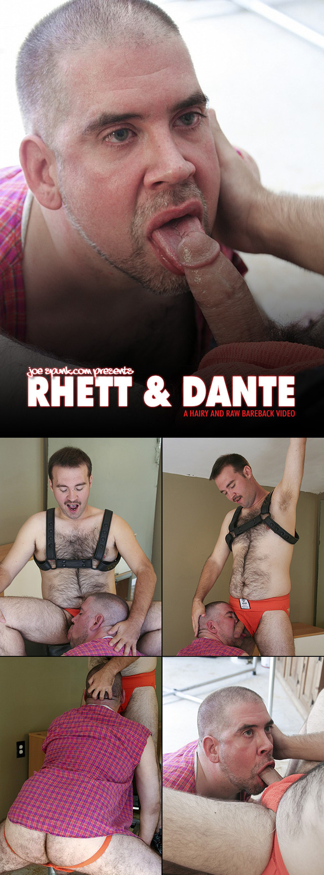 big hairy gay porn bear fucking ass cub collages summers rhett dante hairyandraw polnocy