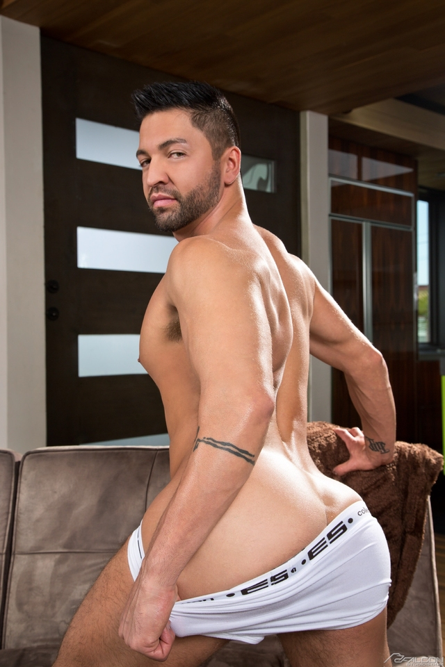 biggest gay porn stars july falconstudios