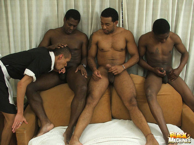black gay people porn gallery hung bfe horse