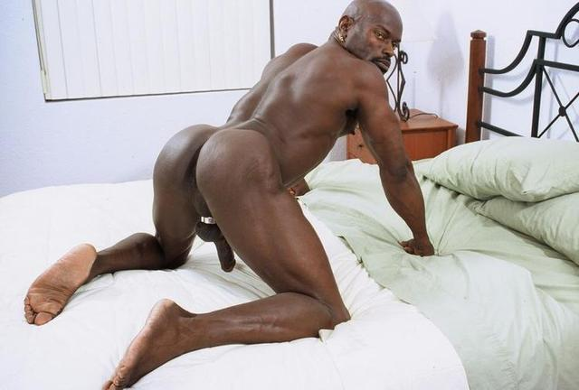 black gay Pic sex black free xxx gays