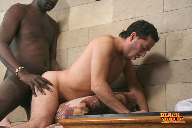 black gay sex porn Pics black white gay photos man forced guy have ebea aecb