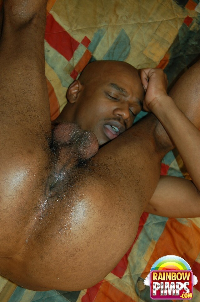 black porn gay men gallery porn black men gay orgy more ebony here ...