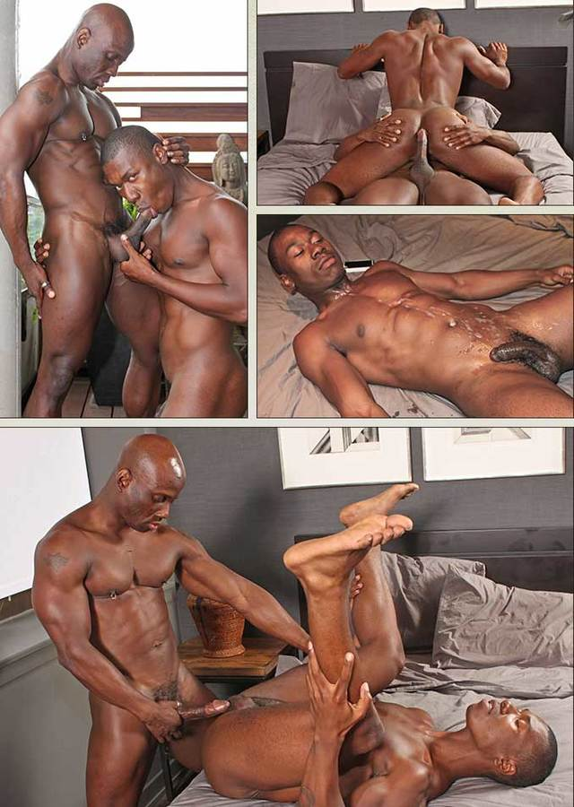 Ebony Gay Porn porn black jay gay brooks ebony themes dudedump damian