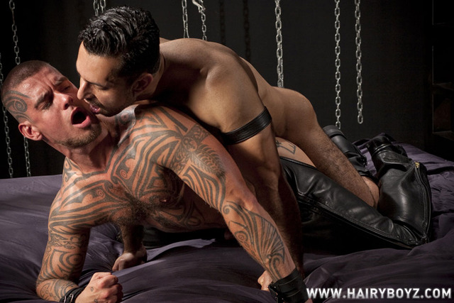 Logan McCree Porn adam champ dominus raging stallion hairy muscle hunk stud pic logan mccree studios cock fucking sucking tattooed presents boyz