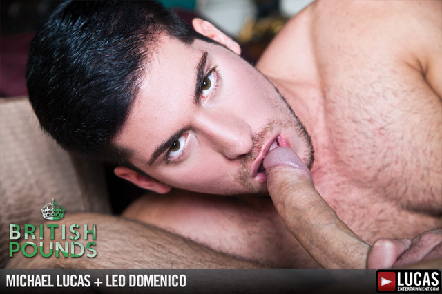 Michael Lucas Porn lucas lvp pounds leo michael entertainment domenico british
