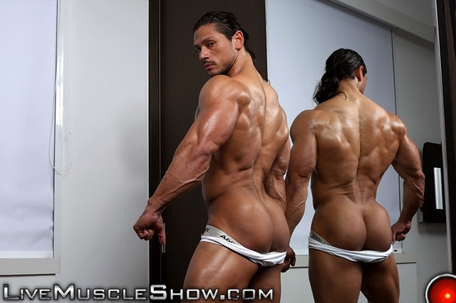 Muscled Gay Porn muscle gallery porn live gay photo pics show nino sabrini