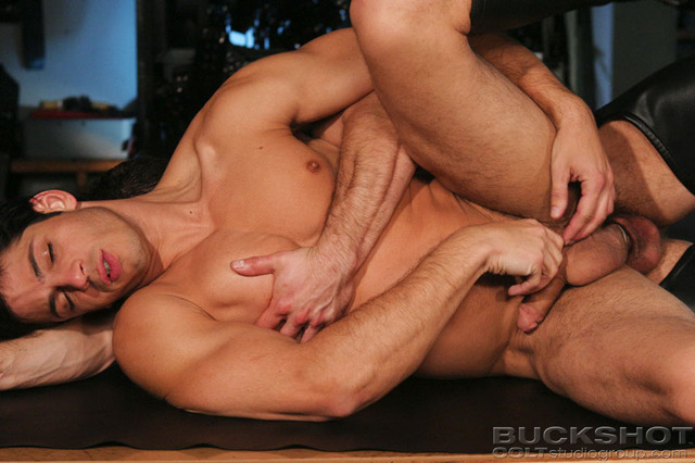 Muscled Gay Porn muscle gay gays leather
