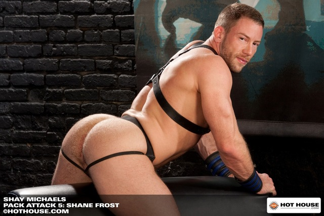Shay Michaels Porn hairy muscle group knight porn muscular gay star woof bear pack hardcore fucking beefy shane frost hot spencer reed scruffy masculine build alert gangbang cole streets shay michaels trevor house steel attack preston