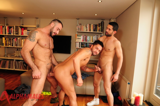 Spencer Reed Porn hairy cock muscular fuck amateur team alphamales spencer reed masculine billy dominic pacifico baval