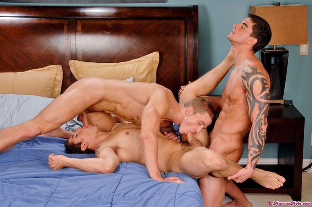 Tyler Torro Porn muscle from pic studios cock gay marcus next door young fuck hunks tyler torro mojo jimmy suck threeway clay