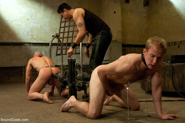 bondage gay sex gay pictures bound bondage gods dungeon
