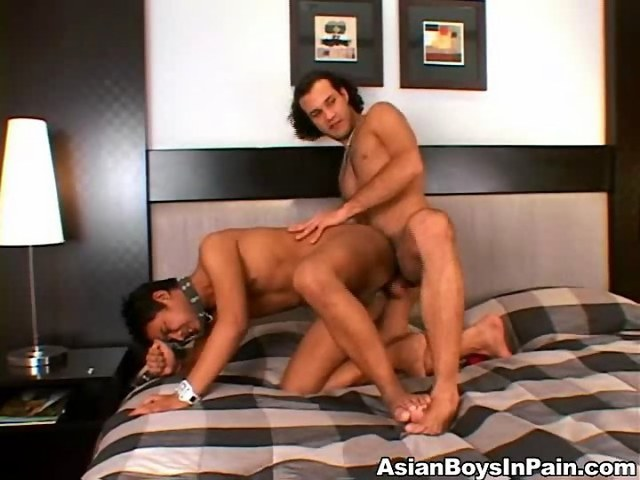 gay asian ass porn dick hard his video tight videos this ass asian loves deep svrcrcr
