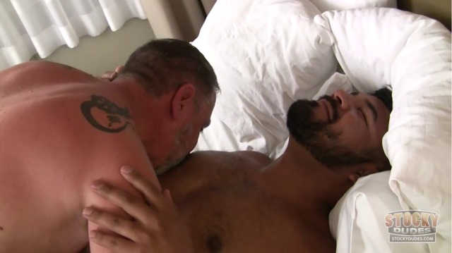 gay bareback daddy porn porn gay bear dudes cub stocky peters michael vega rico denuded