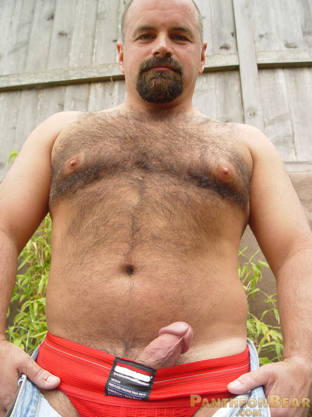 gay bear porn Picture hairy porn gay bear pics cowboy